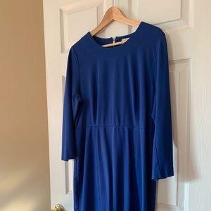JCrew Long Sleeve Blue, Cotton Dress